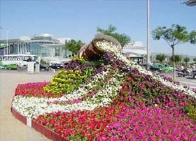 青州市鸿阳花卉苗木