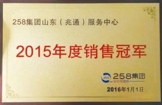 2015年度销售###